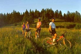 mountain bikers riding off-trail